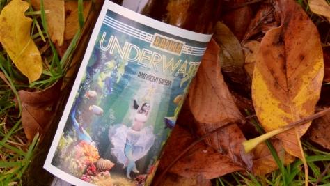 Underwater_piwnakompania.wordpress.com 2