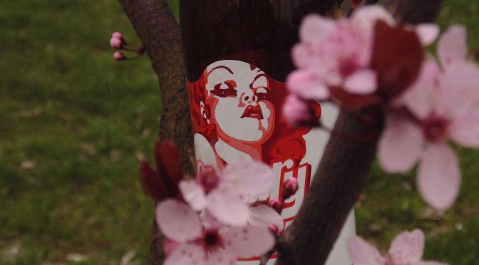 Cherry Lady