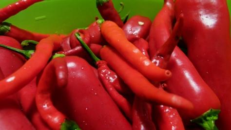 sos-chilli-piwna-kuchnia_piwnakompania-wordpress-com-3