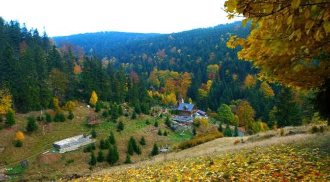 Góry Sowie – Relacja