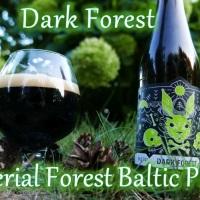 Dark Forest [Imperialny Leśny Porter Bałtycki] - Nepomucen & Widawa