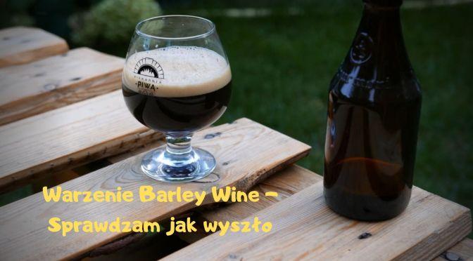 Warzenie Barley Wine – Czas na test.