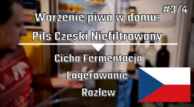 Warzenie piwa w domu: PIls czeski niefiltrowany [cz.3] – lagerowanie i rozlew