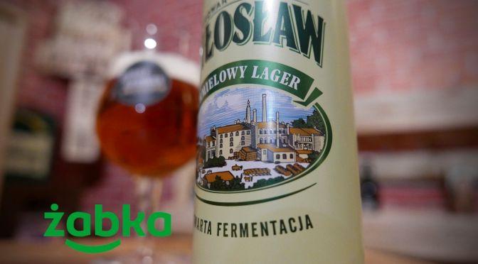 Miłosław chmielowy lager – Puszka [żabka]